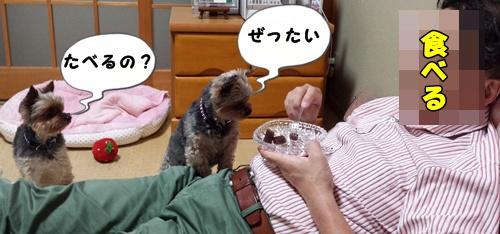 絶対食べる
