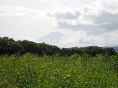 遠藤原からの富士山