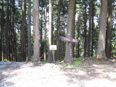 走りやすい道で神川林道