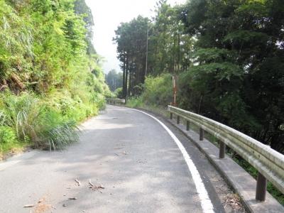 八丁林道舗装路