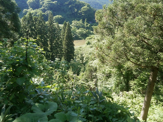 山の写真5