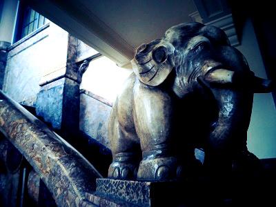 築地本願寺-象
