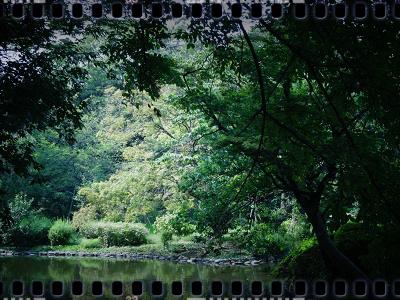 有栖川宮記念公園002