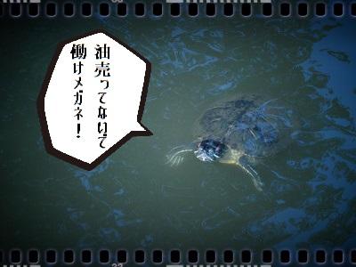 有栖川宮記念公園003