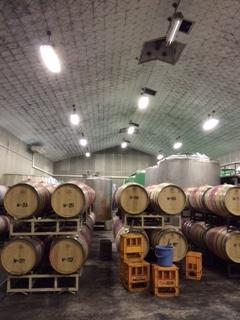 2015 07 17 朝日町ワイン-4