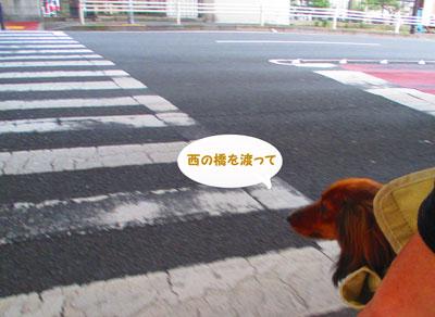 2015-05-yokohama30.jpg