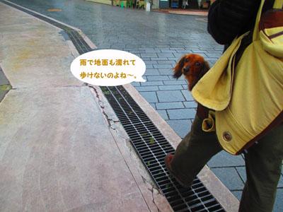 2015-05-yokohama31.jpg