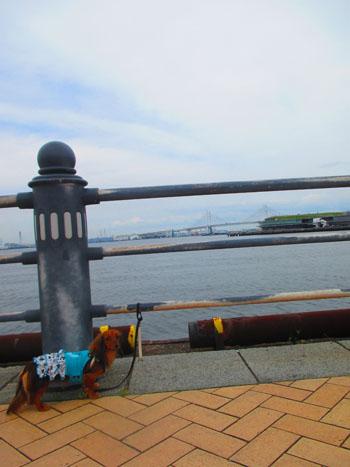 2015-06-yokohama15.jpg
