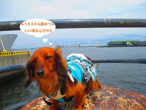 2015-06-yokohama26.jpg