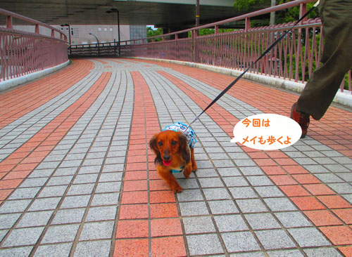 2015-06-yokohama30.jpg