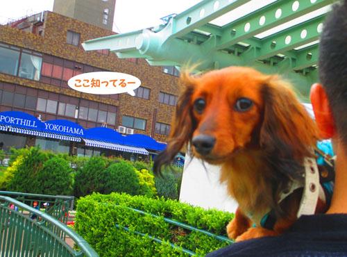 2015-06-yokohama41.jpg