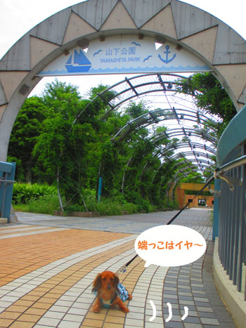 2015-06-yokohama53.jpg