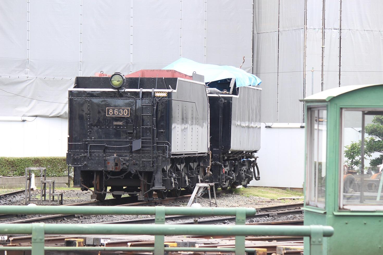 umekoji18.jpg