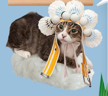 猫ずしニャー11