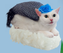 猫ずしニャー太10