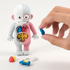 人体模型01