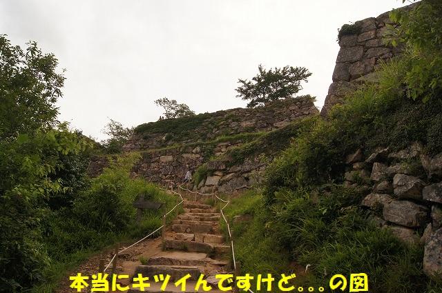 DSC05208.jpg