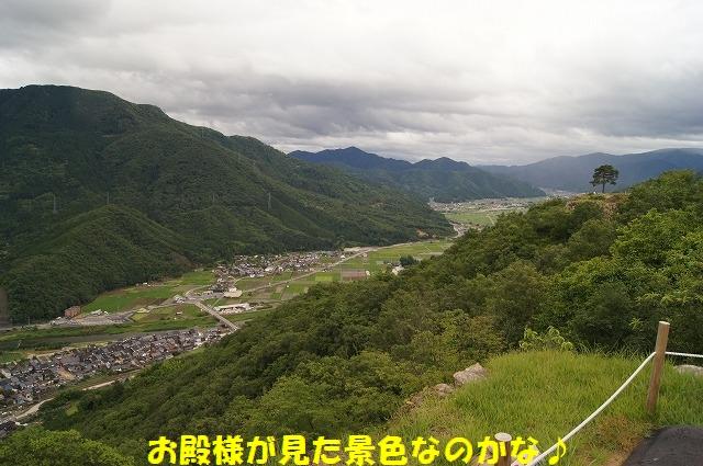 DSC05218.jpg