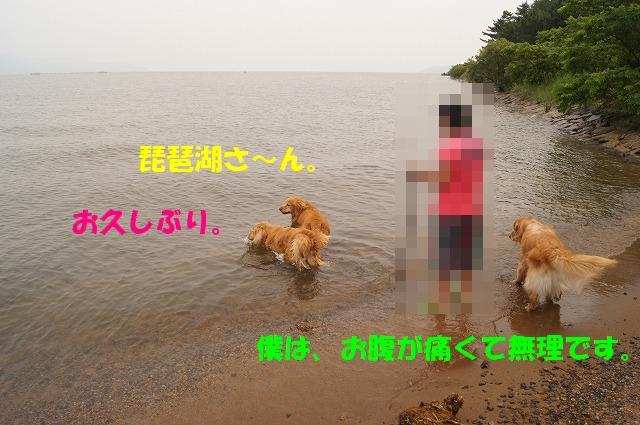 DSC05327.jpg