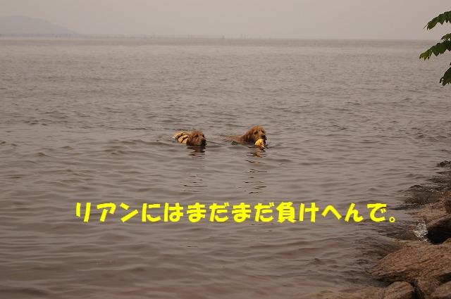 DSC05420.jpg
