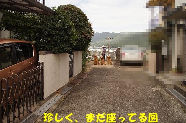 DSC05885.jpg
