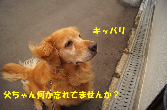 DSC05918.jpg