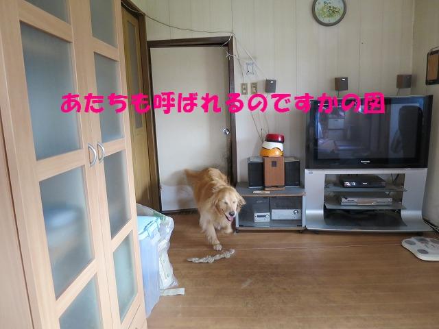 IMG_4864.jpg