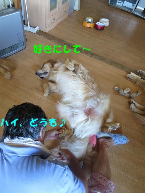 IMG_5306.jpg