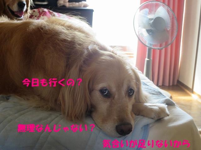 IMG_5613.jpg