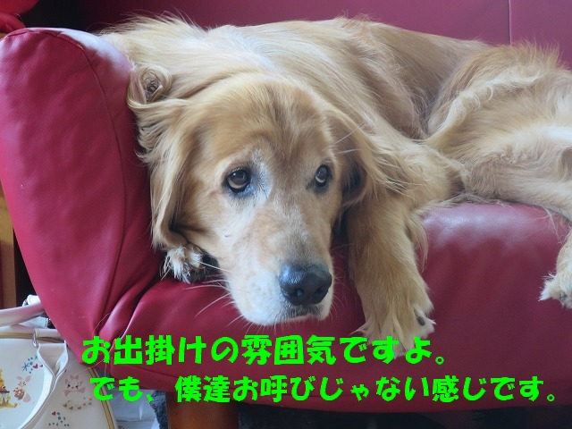 IMG_5733.jpg