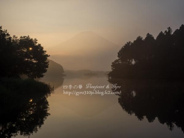 田貫湖 B