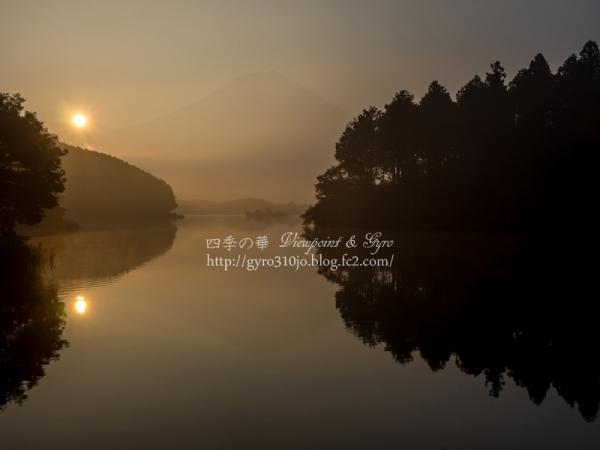 田貫湖 C
