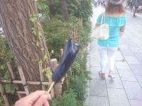 江ノ島散歩 電車 歩き
