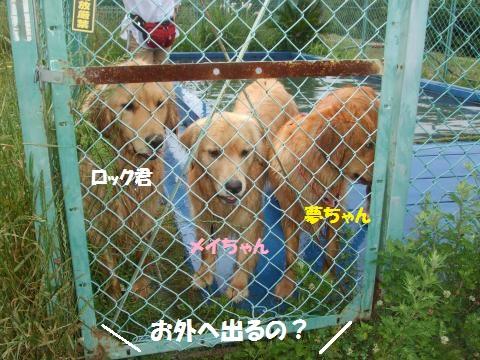 003_convert_20150623051414.jpg