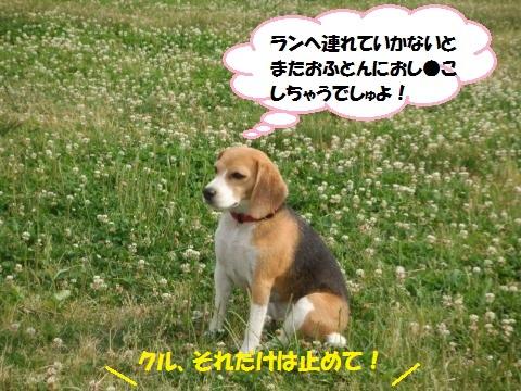 007_convert_20150627094309.jpg