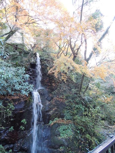 万葉公園15