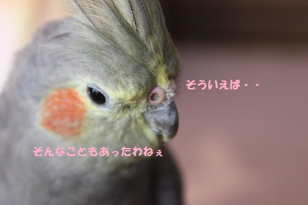 しみじみ~