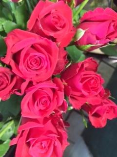 薔薇セール-4