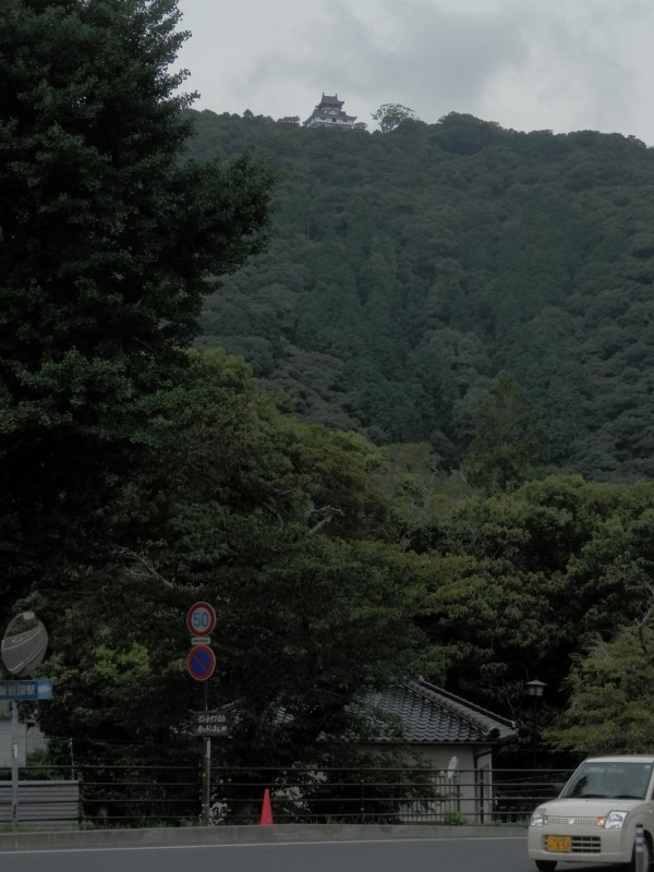 P8160232.jpg