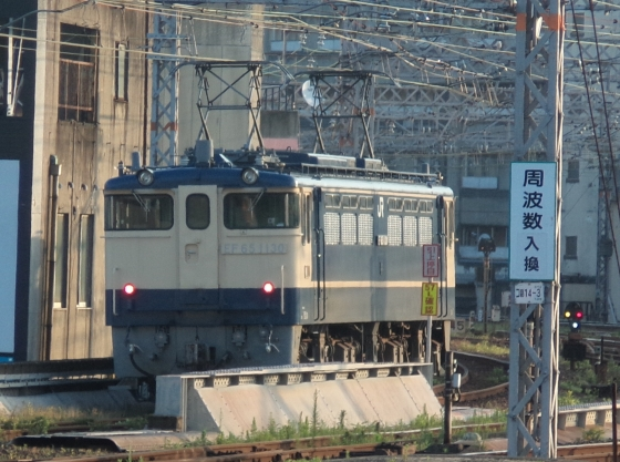 P8030032-b.jpg