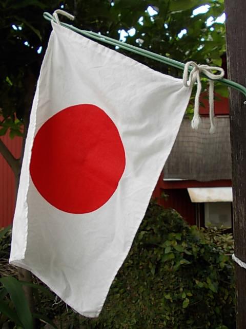 Flag 20150720