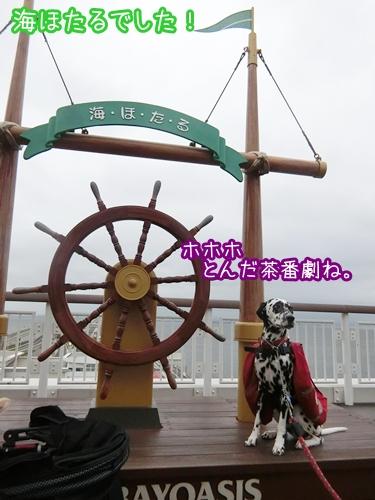 614-3.jpg
