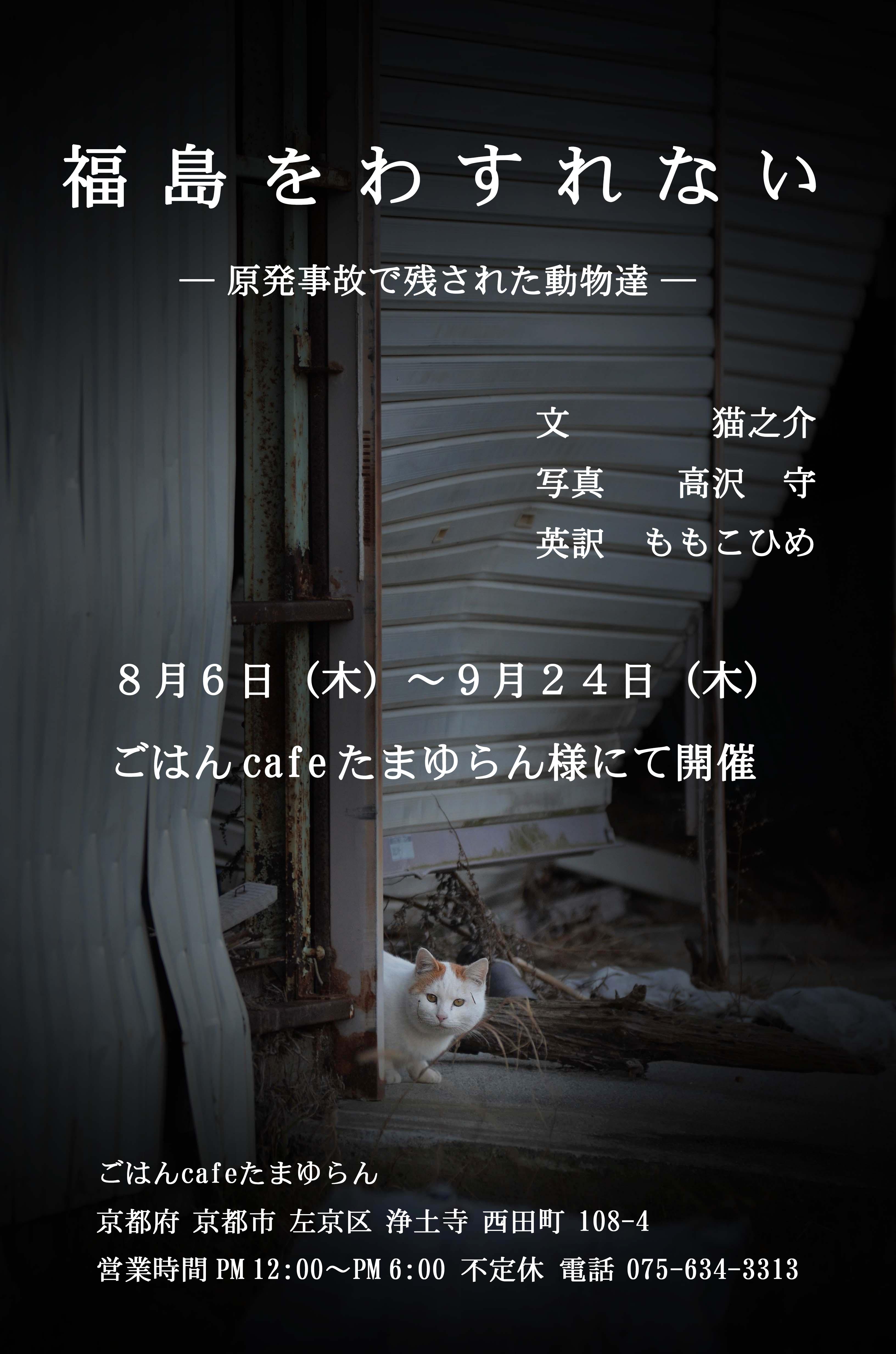 KyotoPanel.jpg