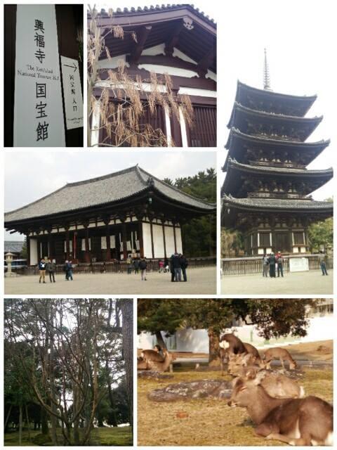 平成26年12月30日奈良旅行2