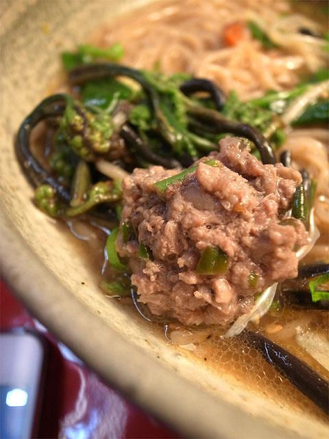 150411ほんてんラーメン-河内鴨らーめん・鴨団子と山菜