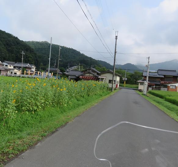 IMG_6044b.jpg