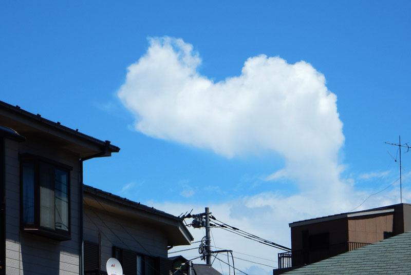 151715N入道雲と向日葵3