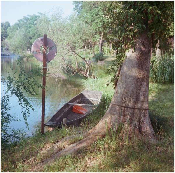 ローライ-2015-8-1-おちょぼ様 河川公園-portara160-8-92440008_R