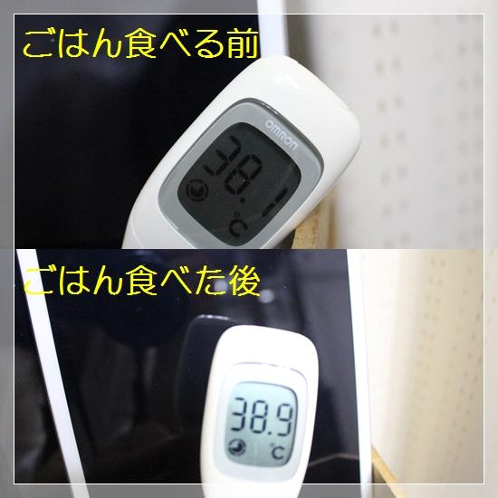茉莉花の体温