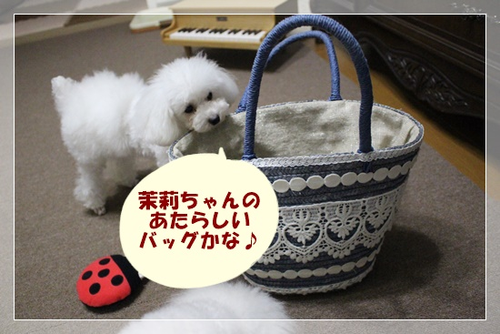 茉莉ちゃんのあたらしいバッグかな♪